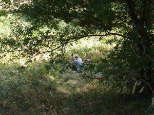lieu nature propice à la contemplation